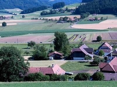 Gesamtschau zur Agrarpolitik: Höchste Zeit für mehr (Struktur-)Vielfalt