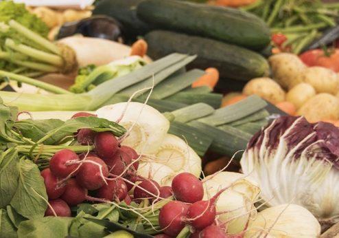 Faktencheck zur Pestizidinitiative