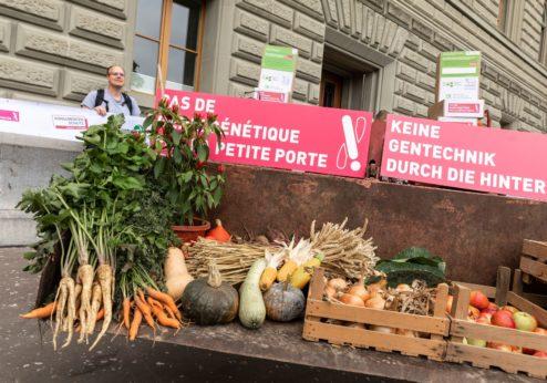 Neue gentechnische Verfahren: Bundesrat prüft Anpassung der rechtlichen Regelung